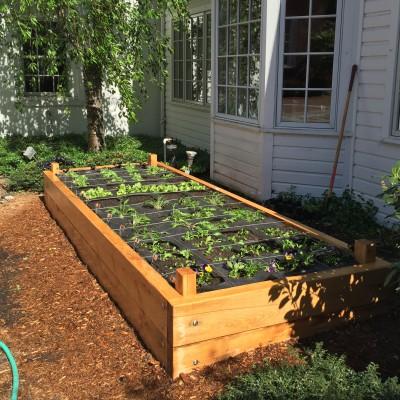 Yard2Kitchen organic edible garden, built for Paper Mill Playhouse