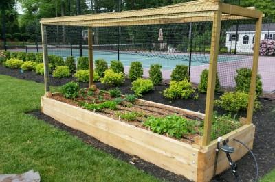 Yard2Kitchen organic gardens for estates