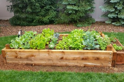 Yard2Kitchen custom organic raised bed garden