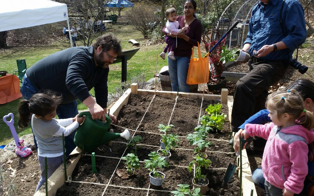 Teaching Kids To Garden
