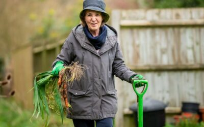 Top Tips for a Successful Fall Vegetable Garden