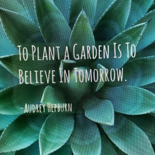 #famousquotes #audreyhepburn #organicgardening