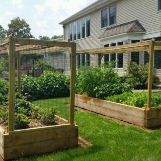 Two bountiful beauties! #organicgardening #organicgardens #organicveggies #raisedbedgardens #healthyfood#