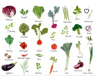 Here are a few of the spring vegetables and herbs we are planting now. #backyardgardens #organicgardening #organicvegetables #raisedbedgardens